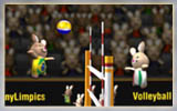 BunnyLimpics Volleyball 2…